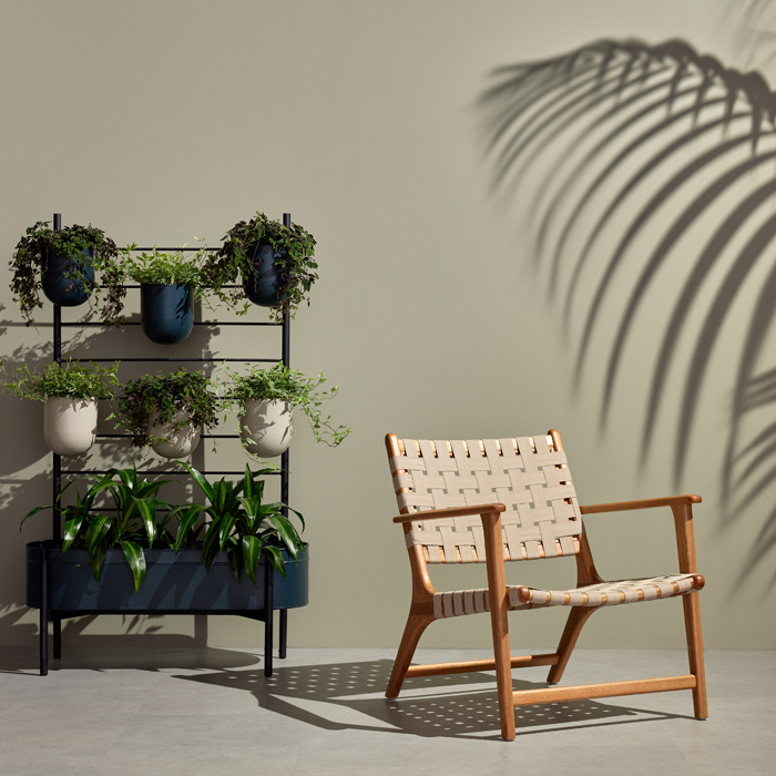 outdoor chair with plants