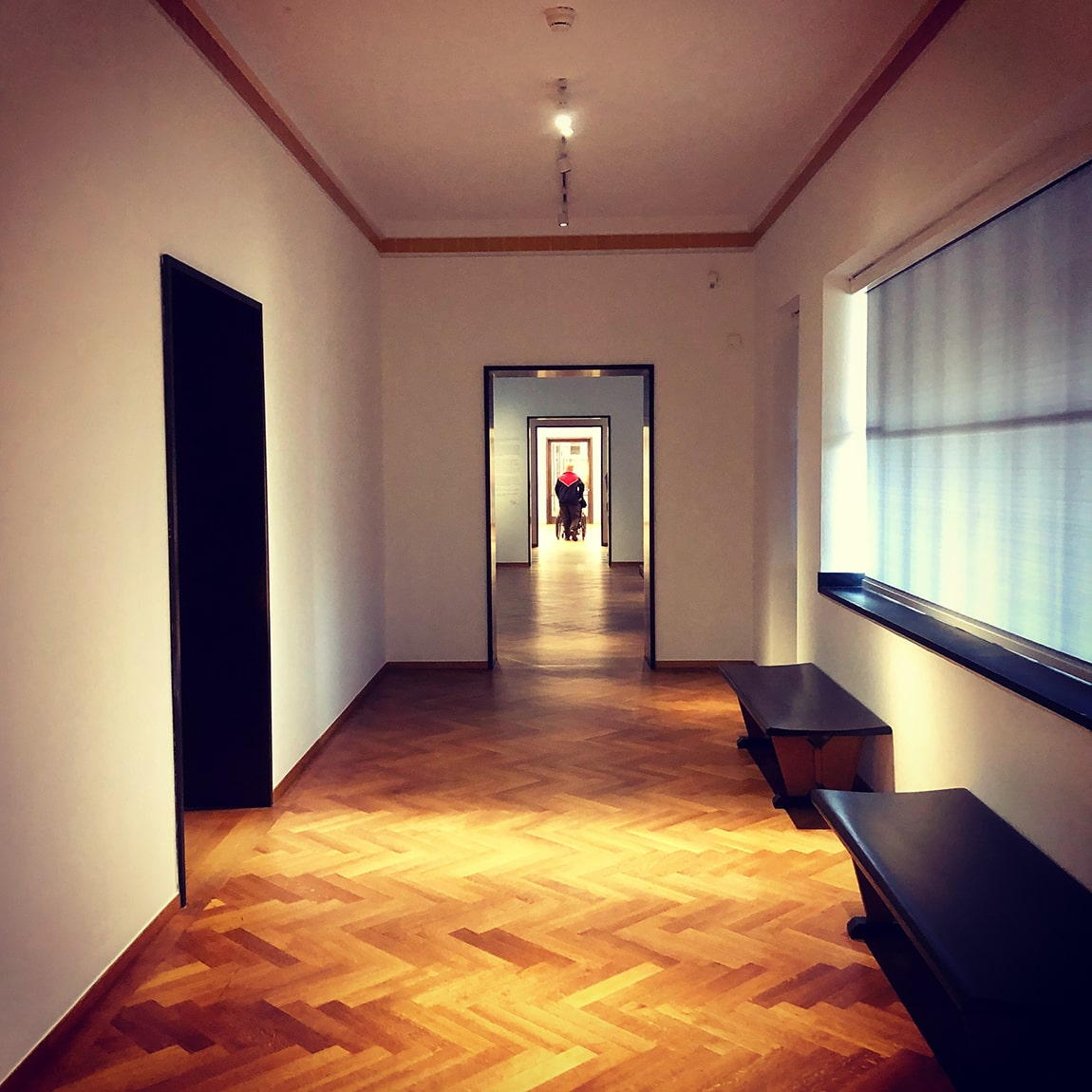 Best flooring for hallways and entries